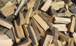 Hoți de lemne depistați de oamenii legii
